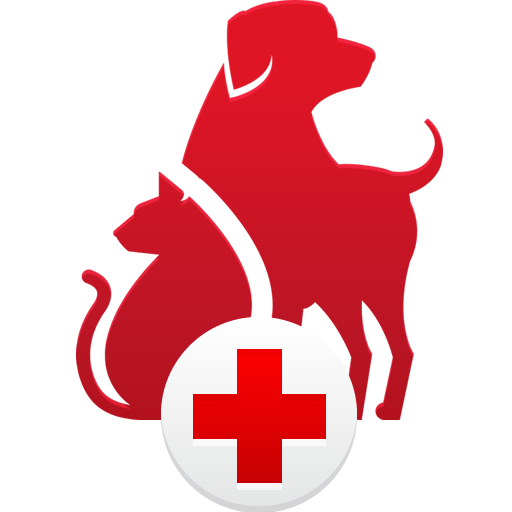 P Is 4 Paws Pet Care, LLC.